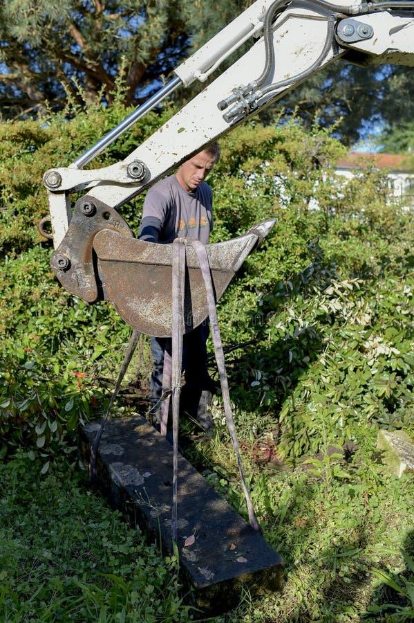Facendo uso dello zappatore in giardino immagini stock