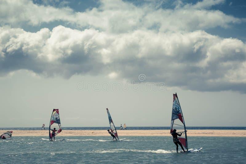 Facendo windsurf in spiaggia di Sotavento immagini stock libere da diritti
