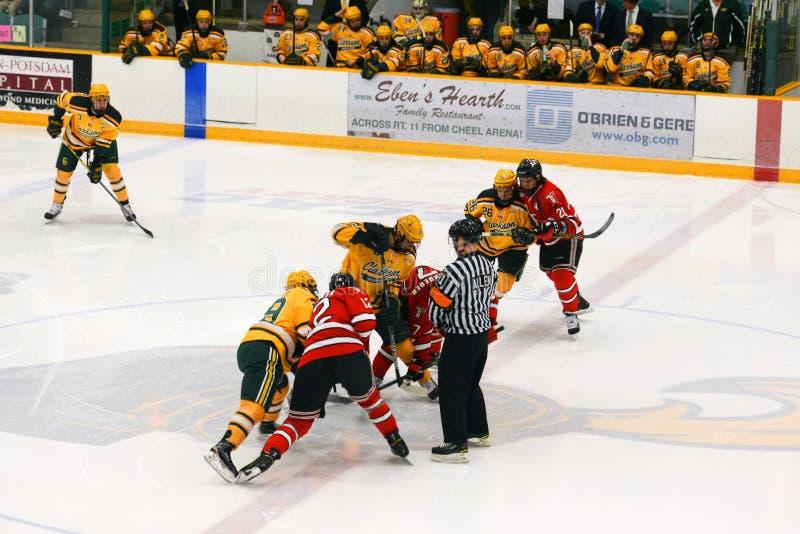 Faceoff in NCAA het Spel van het Hockey stock fotografie