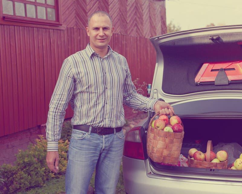 Facet stawia jabłka w bagażniku samochód zdjęcie royalty free