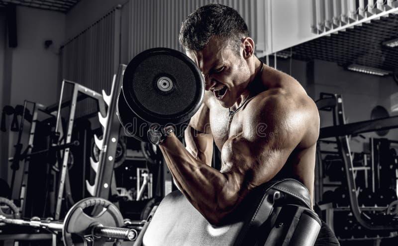 Faceta bodybuilder z dumbbell zdjęcie stock