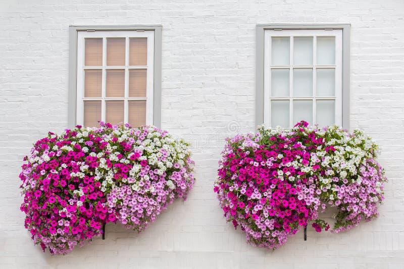 Fachada branca com janelas e flores em umas caixas da flor fotos de stock