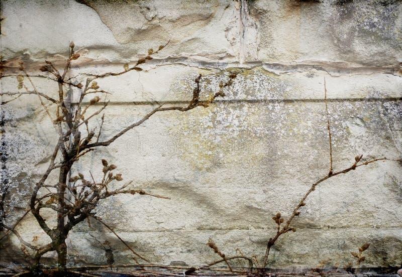 Fachada oscura de la pared imagen de archivo libre de regalías