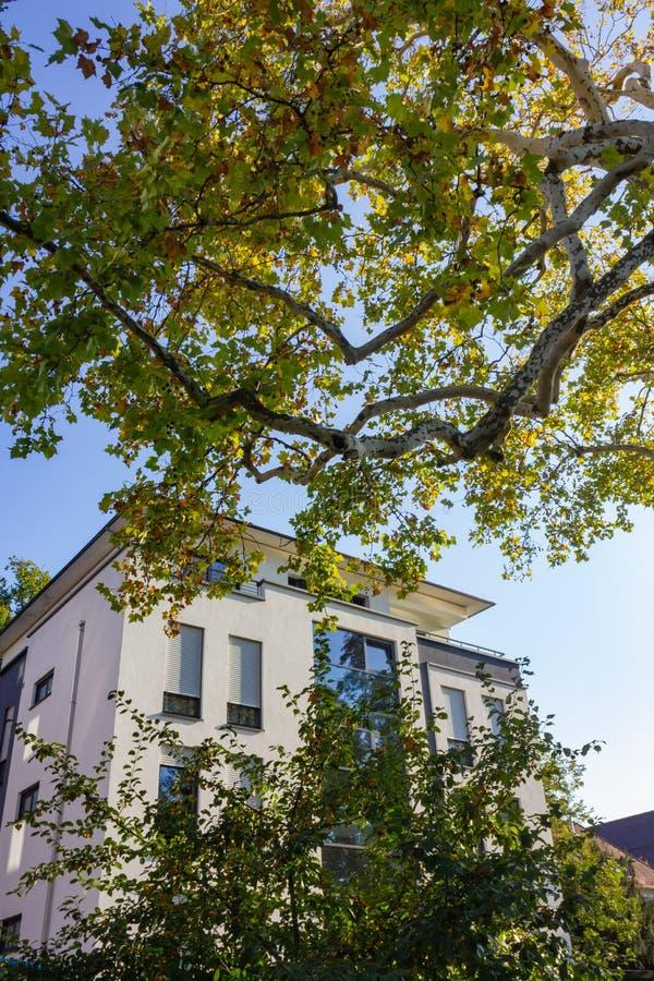 fachadas modernas de la ciudad en la sol del cielo azul del otoño imagen de archivo