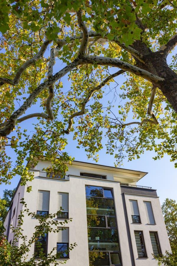 fachadas modernas de la ciudad en la sol del cielo azul del otoño fotos de archivo