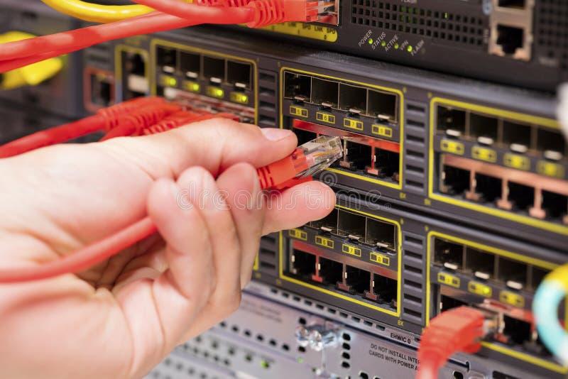 IT-Fachmann schließt ein Netzkabel in Schalter im datacenter an lizenzfreies stockbild