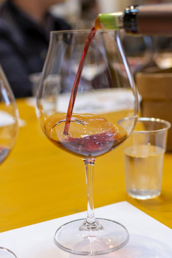 Fachowa wino degustacja, sommelier kurs, dolewanie czerwone wino w win szkłach zdjęcie royalty free