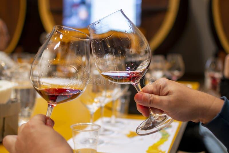 Fachowa wino degustacja, sommelier kurs w wina szkle, patrzeje czerwonego suchego wino fotografia stock