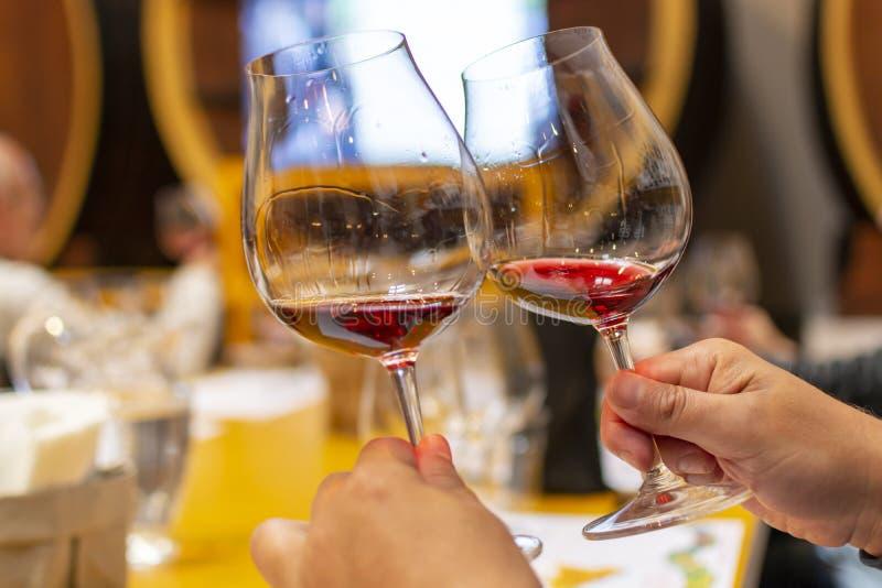 Fachowa wino degustacja, sommelier kurs w wina szkle, patrzeje czerwonego suchego wino zdjęcie royalty free