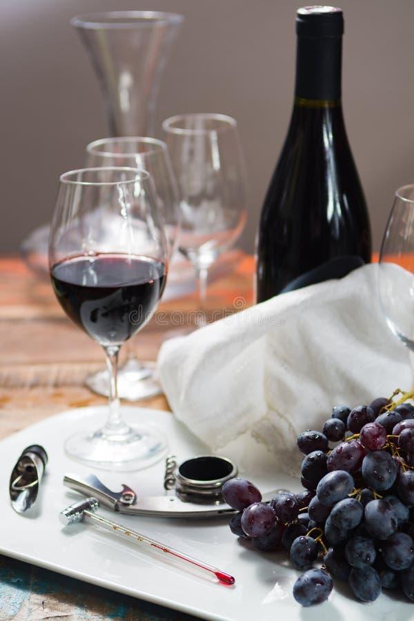 Fachowego czerwonego wina smaczny wydarzenie z wysokiej jakości wina szkłem zdjęcia stock