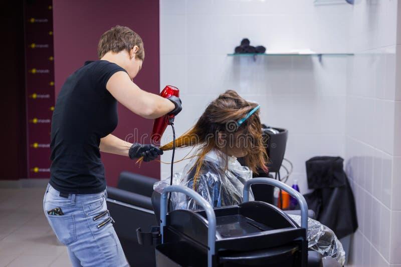 Fachowego fryzjera klienta suszarniczy włosy zdjęcie royalty free