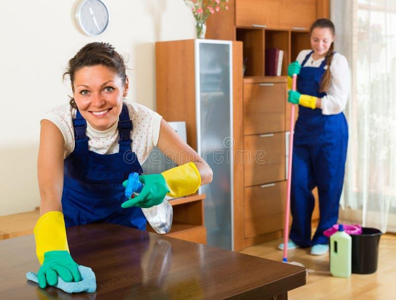Fachowi czyściciele robią cleaning zdjęcia stock