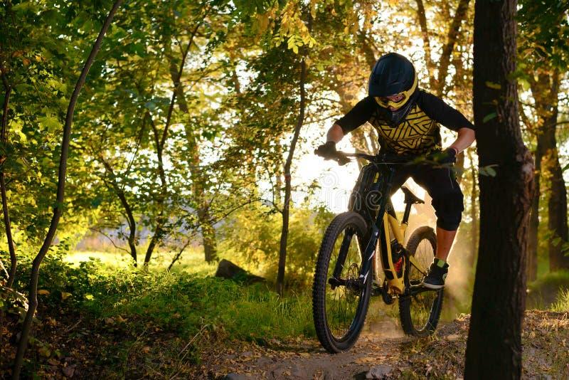 Fachowy cyklista Jedzie rower górskiego na jesień Lasowym śladzie Krańcowy sport i Enduro kolarstwa pojęcie obraz royalty free