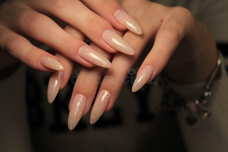 fachowy piękny manicure zdjęcia royalty free