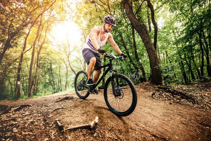 Fachowy roweru górskiego cyklisty jazdy ślad w lesie fotografia stock