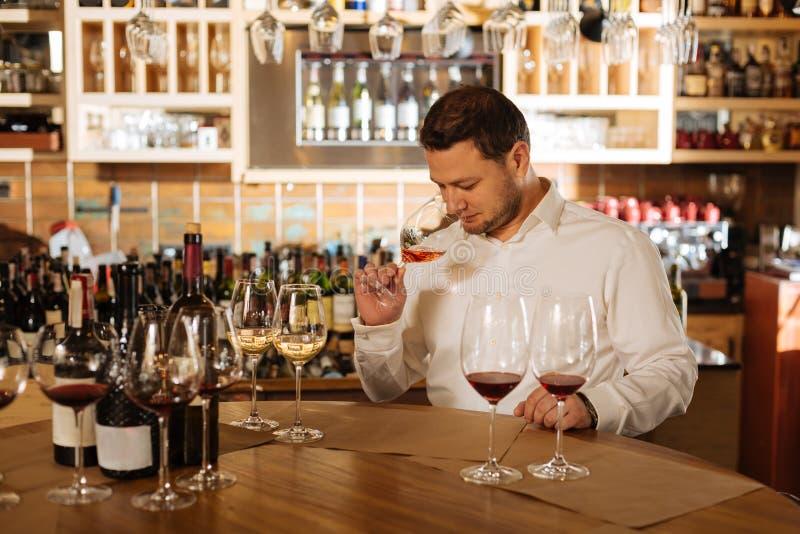 Fachowy wykwalifikowany męski sommelier wącha wino zdjęcia stock