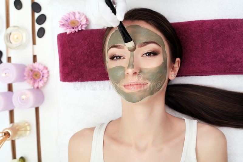 Facial Beauty Treatment. Beautiful Woman Getting Cosmetic Mask stock images