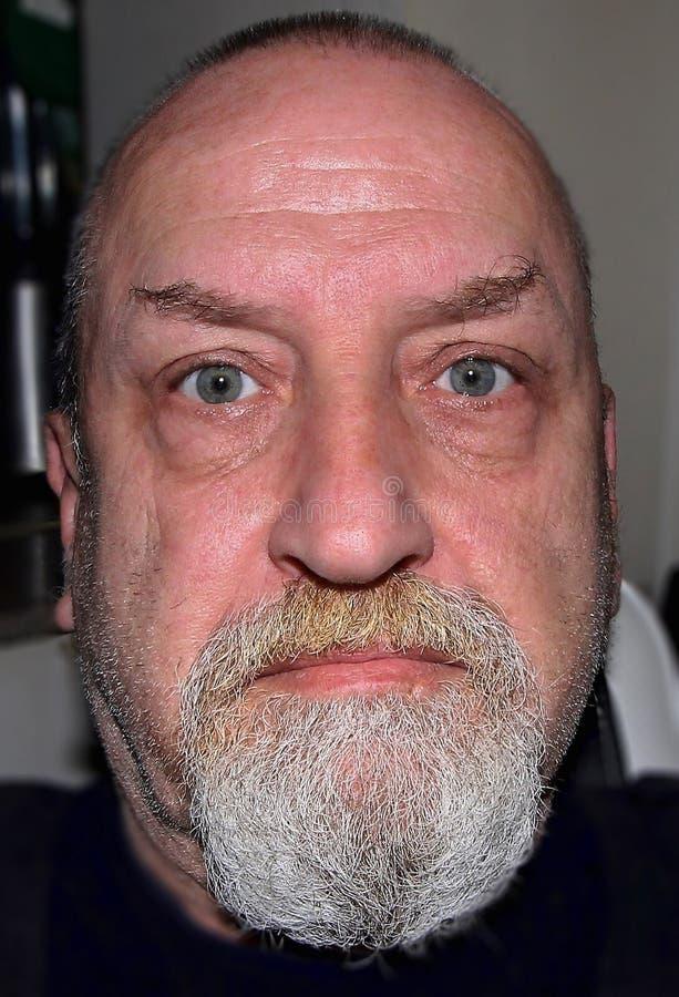 Facial Hair, Beard, Hair, Eyebrow stock photo