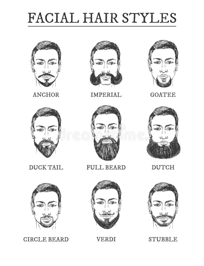 Facial hair styles barber guide set. Facial hair styles barber guide. Beards, moustaches. Anchor, imperial, goatee, duck tail, full beard, dutch, circle, Verdi vector illustration