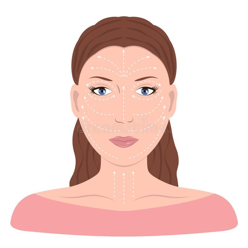 Facial Massage Lines for Applying Cream on Face. And neck. Vector illustration flat design vector illustration
