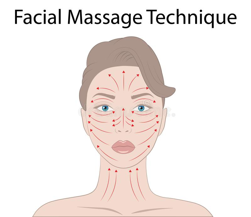 Facial Massage Technique and Shiatsu points, acupuncture Vector Illustration. Isolated on white background stock illustration