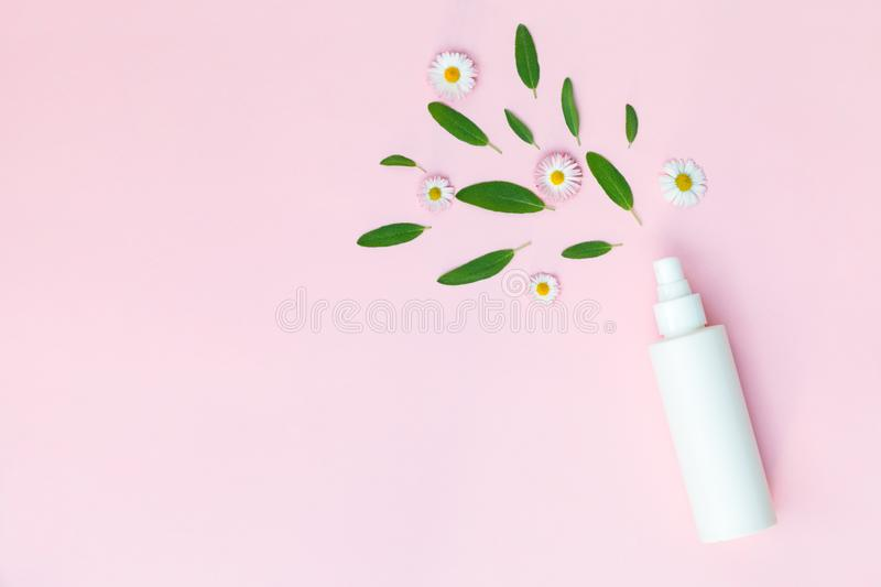 Facial moisturizing toner, hair spray, floral body deodorant with fresh chamomile daisy flowers isolated on pastel pink background. Bottle of facial moisturizing stock photography
