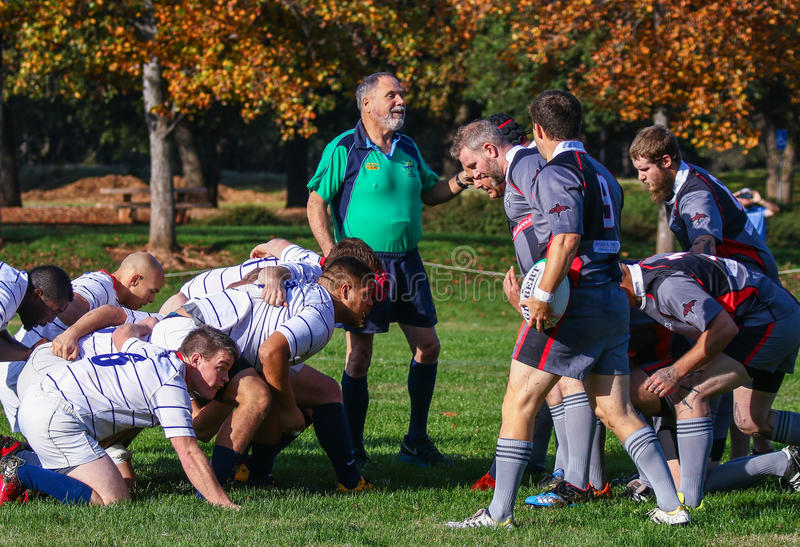 Facing Off. Rugby players in action at the park in Redding, California royalty free stock images