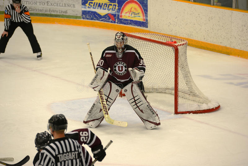 Facklig Goalie #1 i NCAA-hockeylek arkivbilder