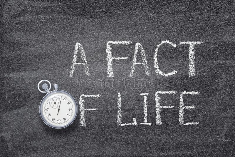 A fact of life watch. A fact of life phrase handwritten on chalkboard with vintage precise stopwatch used instead of O royalty free stock images