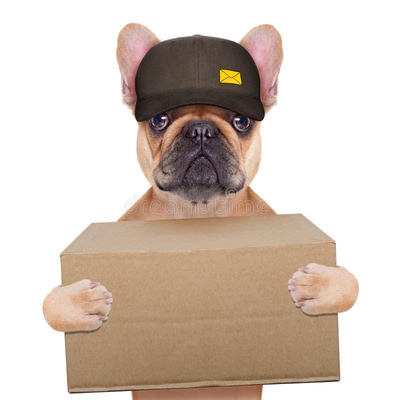 Facteur de chien photo libre de droits