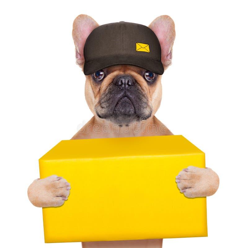 Facteur de chien image stock
