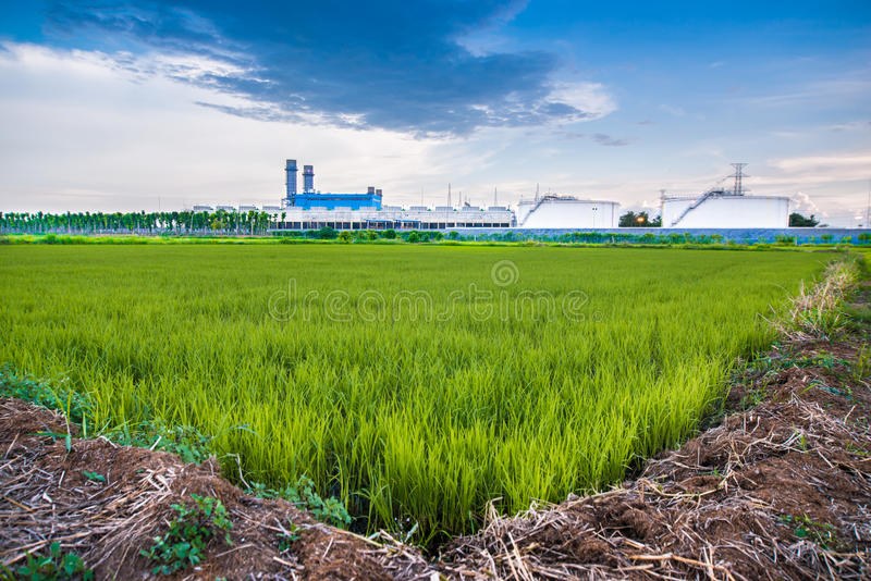 The factory and field royalty free stock photo