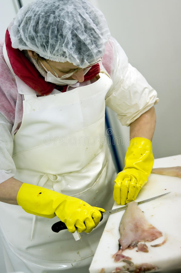Factory worker slicing fish royalty free stock image