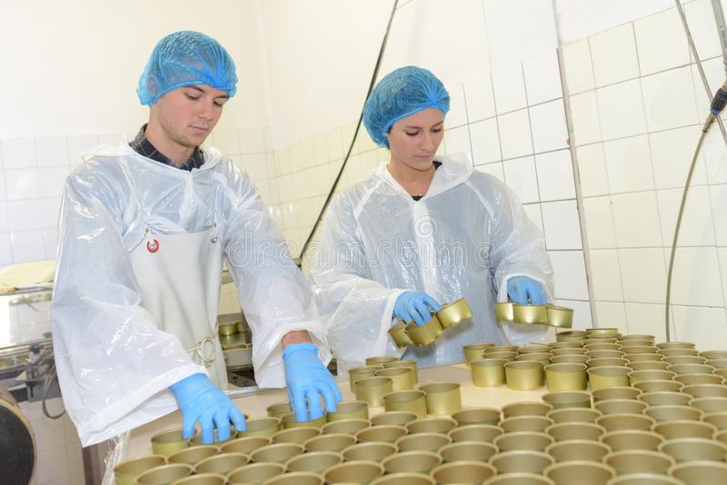 Factory workers preparing tins for canned food. Factory stock image