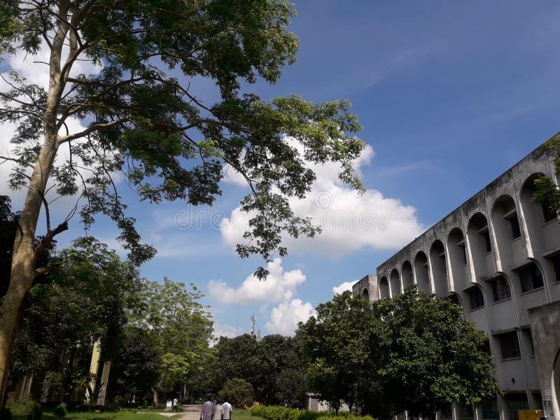 faculty images libres de droits