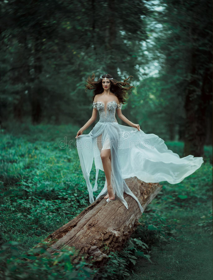 A fada da floresta da fantasia foto de stock royalty free