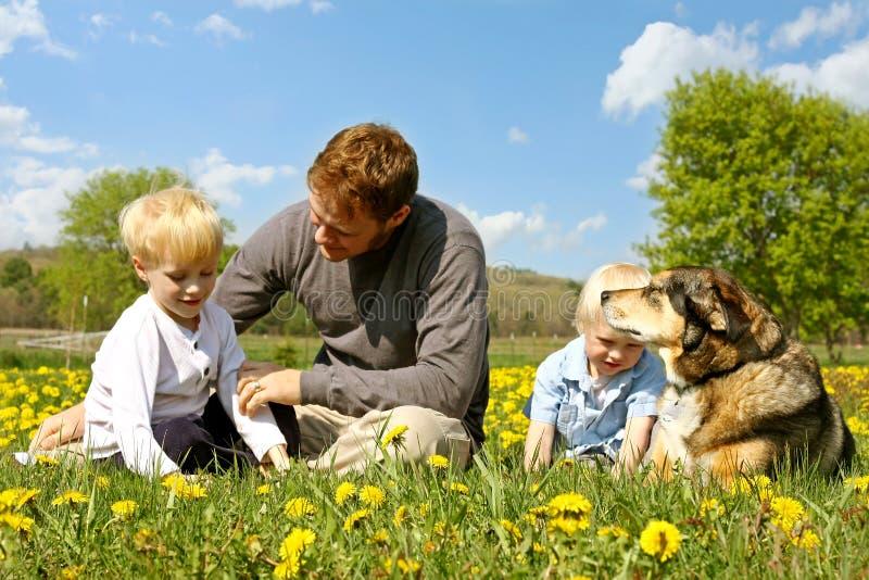 Fader, barn och hund som kopplar av i blommaäng royaltyfri foto