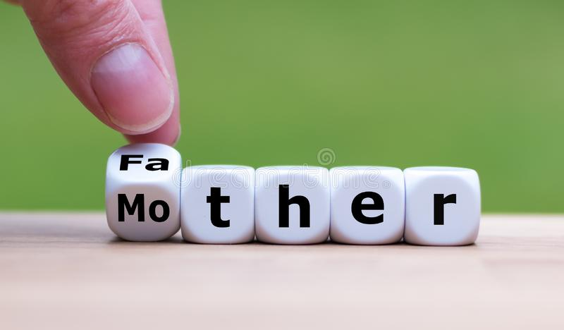 Fader eller moder? royaltyfria foton