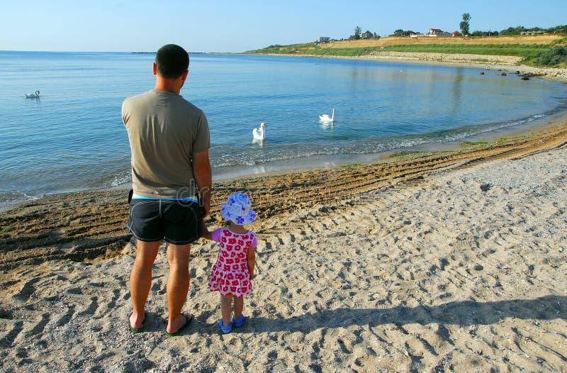 Fader och dotter som ser svanar på stranden arkivbilder