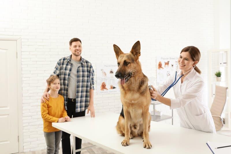 Fader och son med deras husdjur som bes?ker veterin?ren i klinik arkivbild