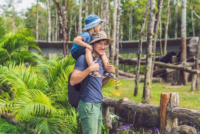 Fader och son på zoo Utgifterdag med familjen på zoo arkivfoton