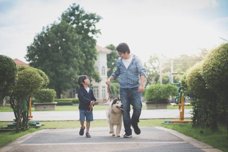 Fader och son som går med en siberian skrovlig universitetslärare i parkera arkivfoto