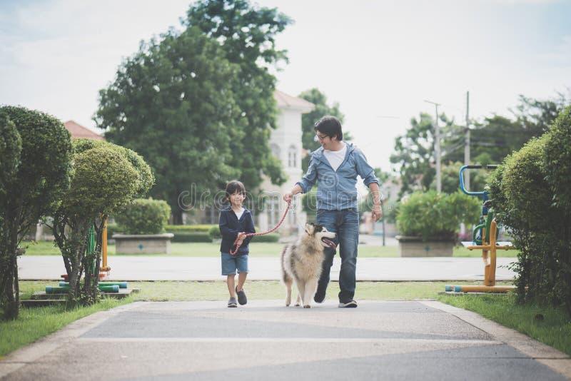 Fader och son som går med en siberian skrovlig universitetslärare i parkera arkivbild