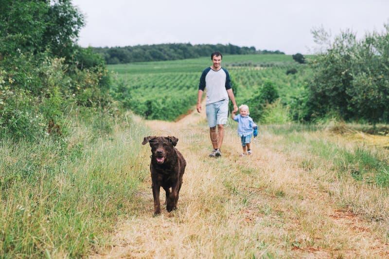 Fader och son som går med hunden på naturen, utomhus royaltyfri fotografi