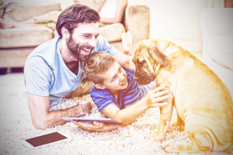 Fader och son som spelar med en hund, medan genom att använda den digitala minnestavlan fotografering för bildbyråer
