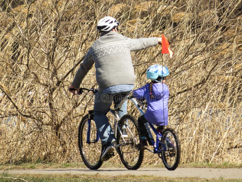 Fadern And Daughter Riding cyklar i parkera royaltyfri foto