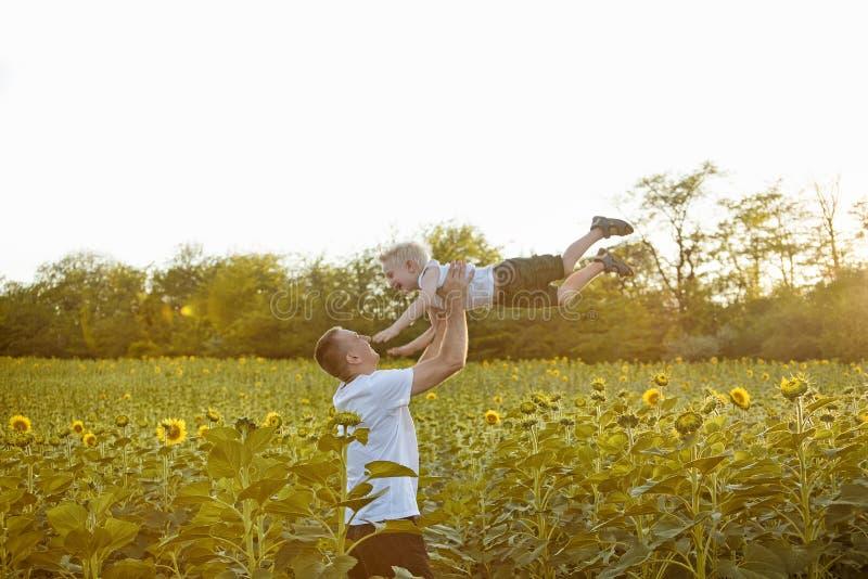 Fadern kastar upp hans lilla son p? soligt solrosf?lt royaltyfri bild