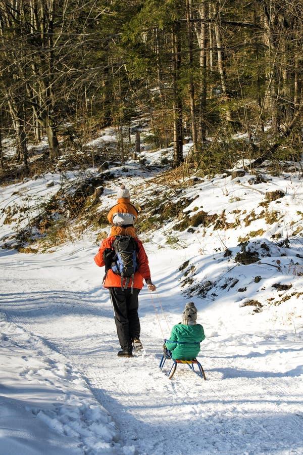 Fadern med hans son på hans skuldror bär den andra sonen på en släde på vägen i en snöig skogvinterdag arkivbilder
