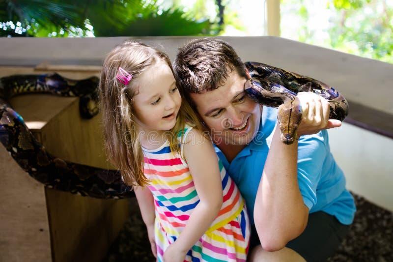 Fadern och barnet rymmer och matar pytonormormen på zoo arkivfoto