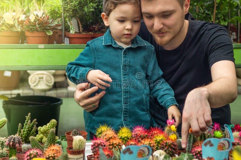 Fadern och hennes behandla som ett barn pojken i en växt shoppar se kakturs Arbeta i trädgården i växthus Botanisk trädgård bruka arkivbild